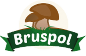Bruspol