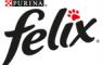 Felix Nestle