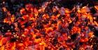 Węgiel, brykiet i rozpałka