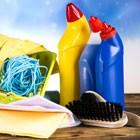 Do czyszczenia i dezynfekcji WC